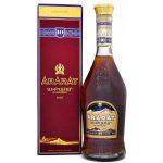 Lahev Brandy Ararat 10y 0,7l 40%